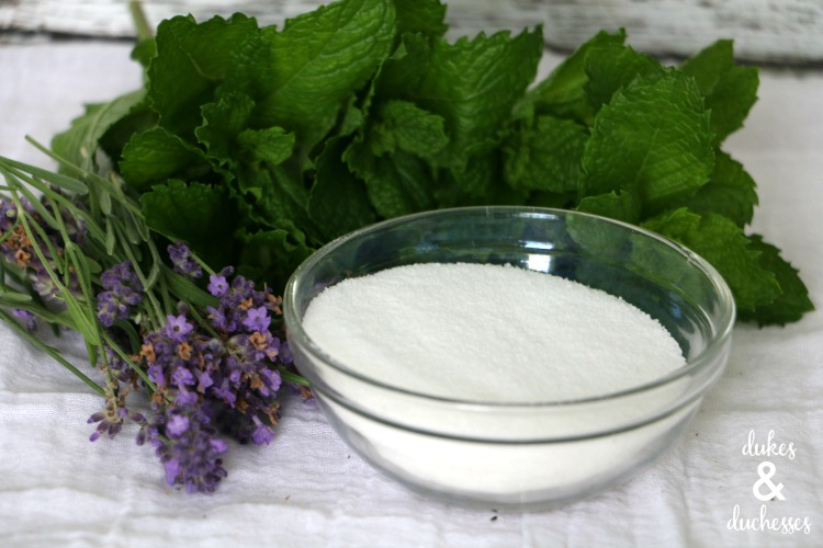 lavender and mint simple syrup recipe