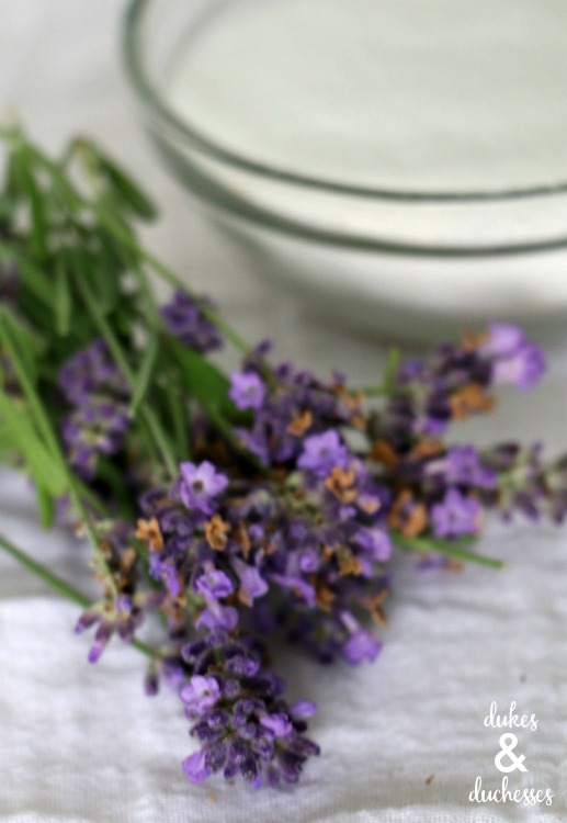 lavender and sugar for simple syrup