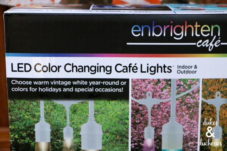 LED color changing cafe lights