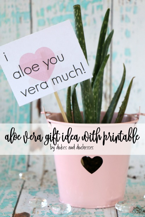 aloe vera gift idea with printable