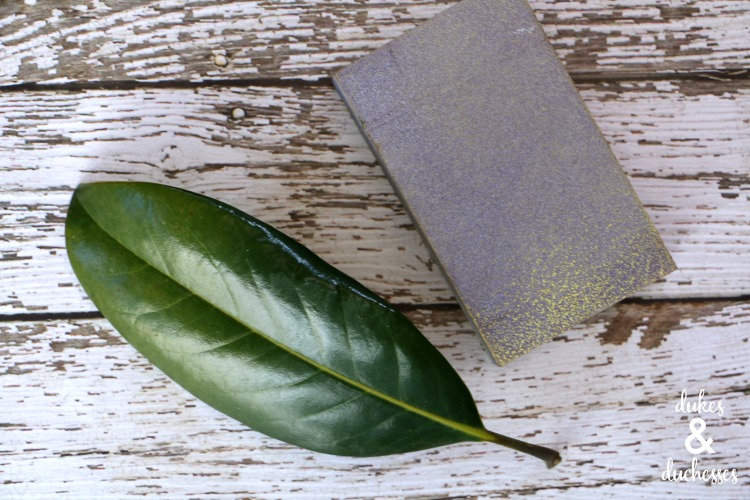 sanded magnolia leaf craft