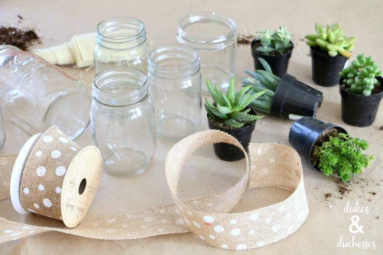 succulent planting party ideas