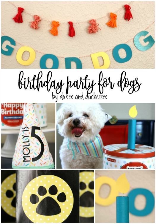 birthday party ideas for dogs