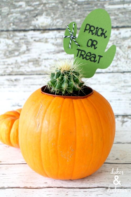 easy cactus halloween gift