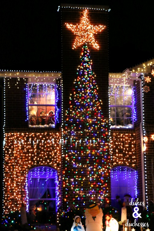 christmas tree light display