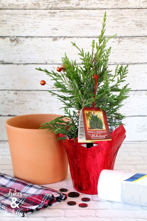 small christmas tree gift ideas