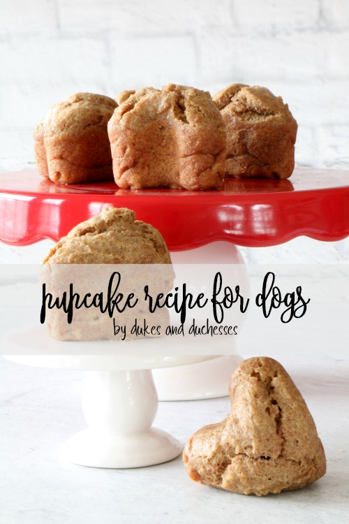 Pupcake recipe for dogs