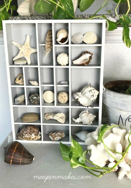 DIY shell collection organization