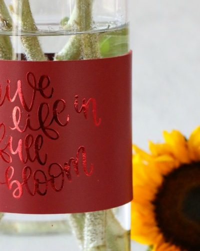 red leather vase wrap