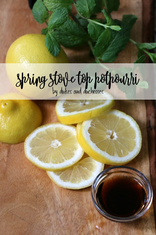 spring stove top potpourri