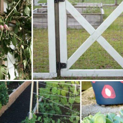8 Creative Ideas for Your Outdoor Garden