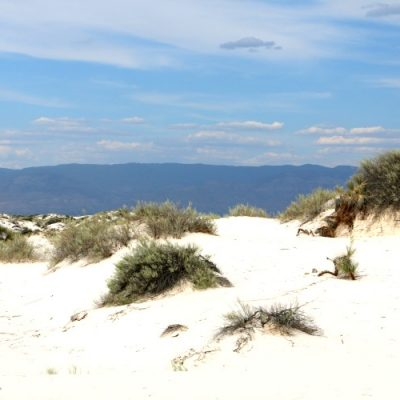 White Sands National Monument and Park {What You Need To Know}