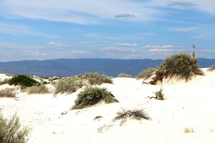 visiting white sands national monument in new mexico