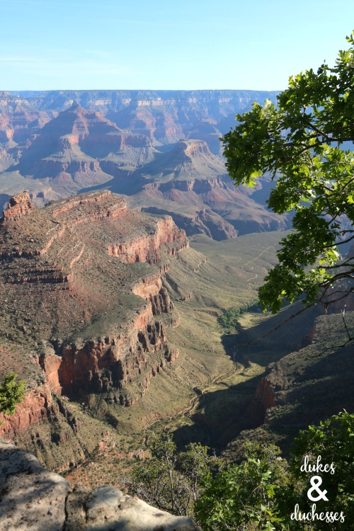 walking south rim of grand canyon