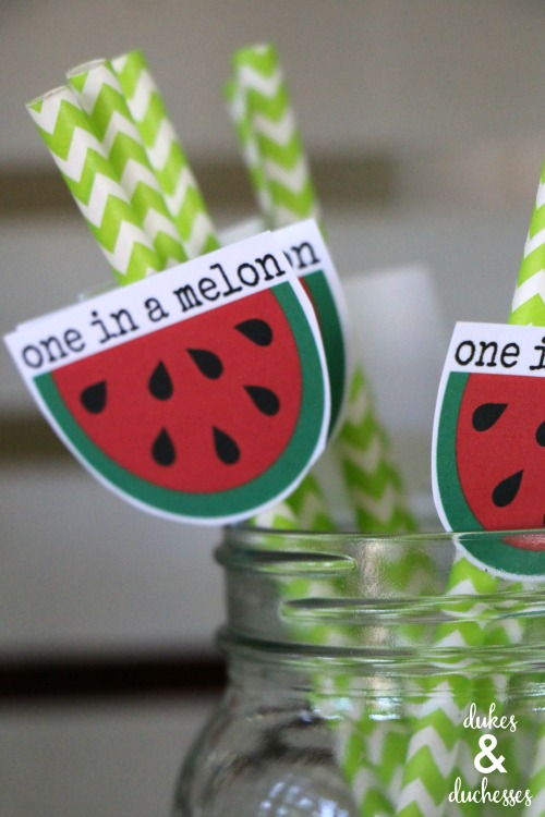 DIY one in a melon straw toppers for watermelon party