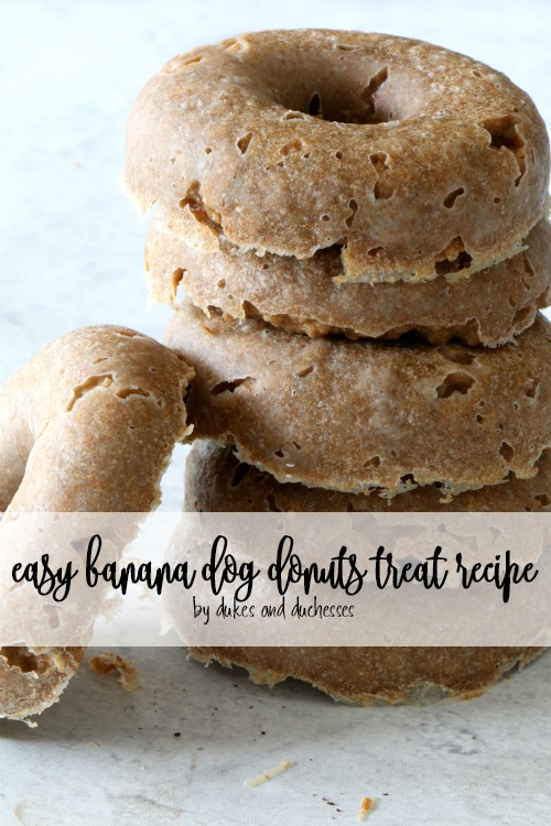 easy banana dog donuts treat recipe