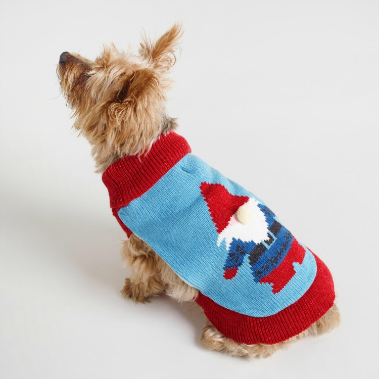 gnome dog sweater