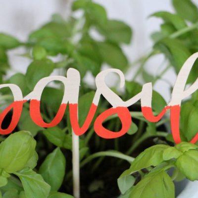 DIY Wood Veneer Plant Markers