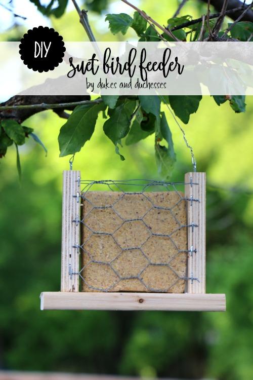 DIY suet bird feeder