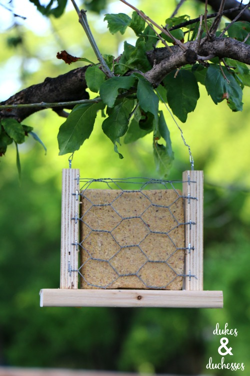 scrap wood chicken wire bird feeder