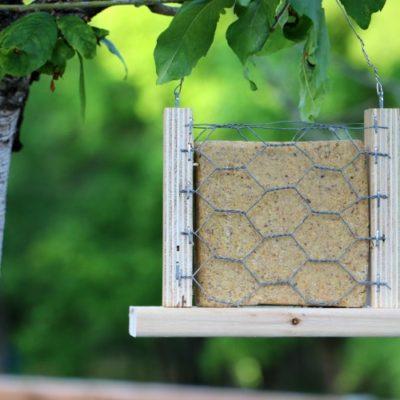 scrap wood suet bird feeder