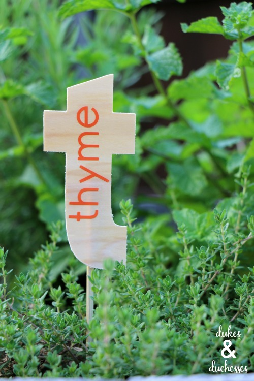 DIY garden markers made with cricut maker