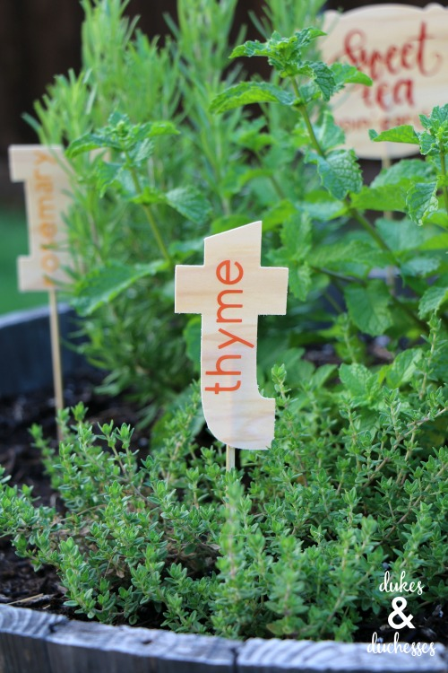 sweet tea garden with garden markers
