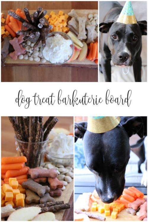 dog treat barkuterie board