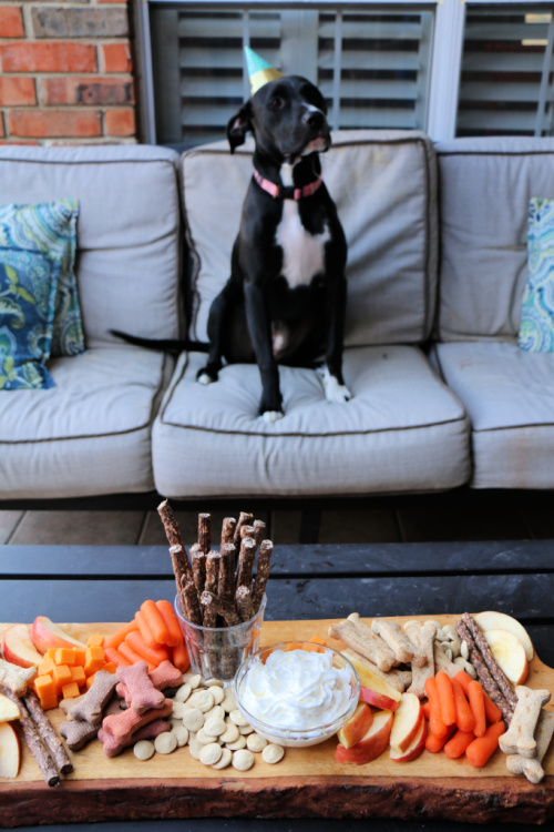 snack board for dogs